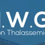 1st International Working Group on Thalassemia