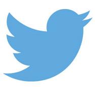 TW logo bis